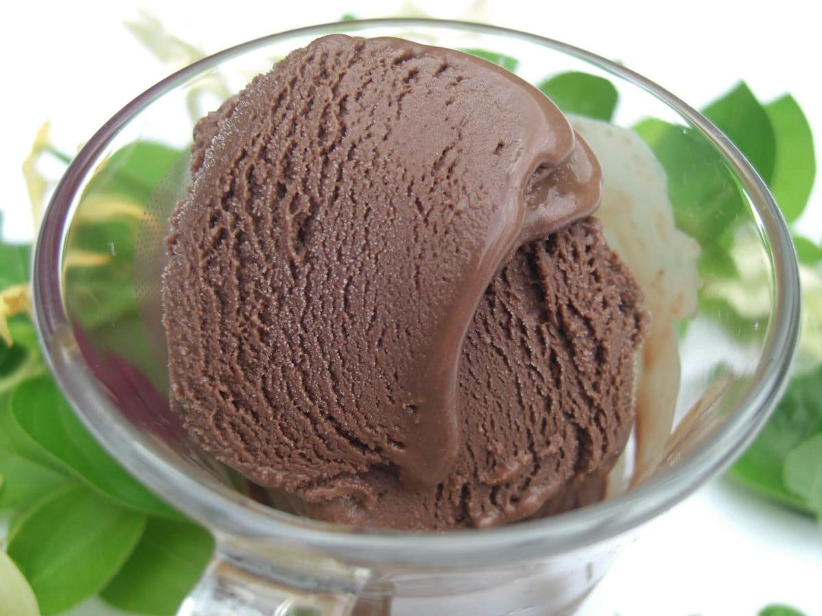 Vegan Very Chocolate Ice Cream • The Inspiration Cloud