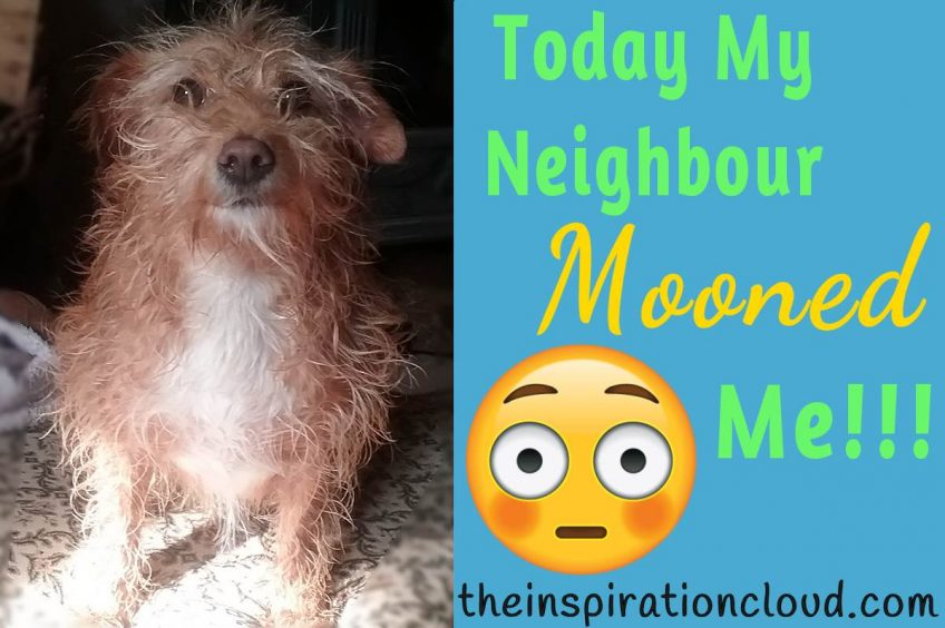 Today My Neighbour Mooned Me!