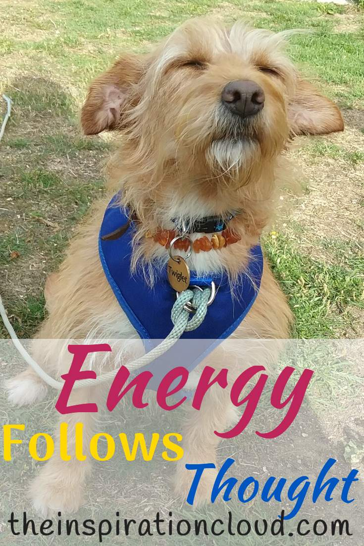 Energy Follows Thought - Twiggy Goes Cosmic